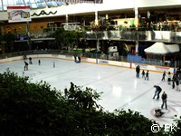 Ice Palace, West Edmonton Mall